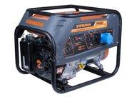 Генератор бензиновый FIRMAN RD-8910